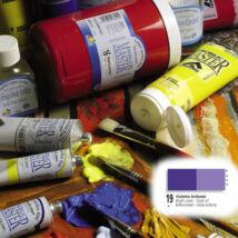 Ferrario Acrilic Master akrilfesték 60ml Bright violet 19